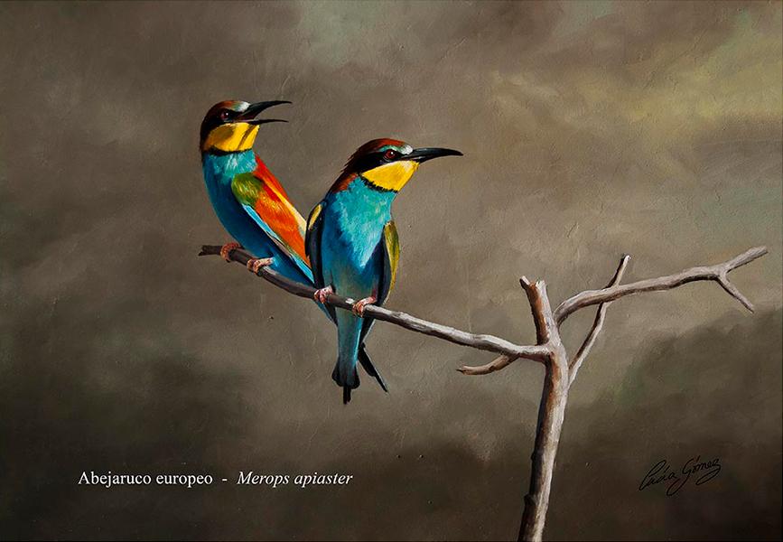 Abejaruco europeo / European bee-eater / Merops apiaster - Óleo / Oil painting - © Lucía Gómez Serra