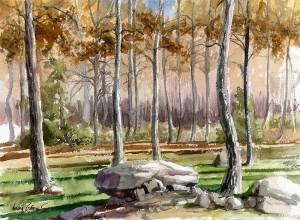 Rebollo / Pyrenean oak / Quercus pyrenaica - Acurela / Watercolour - © Lucía Gómez Serra