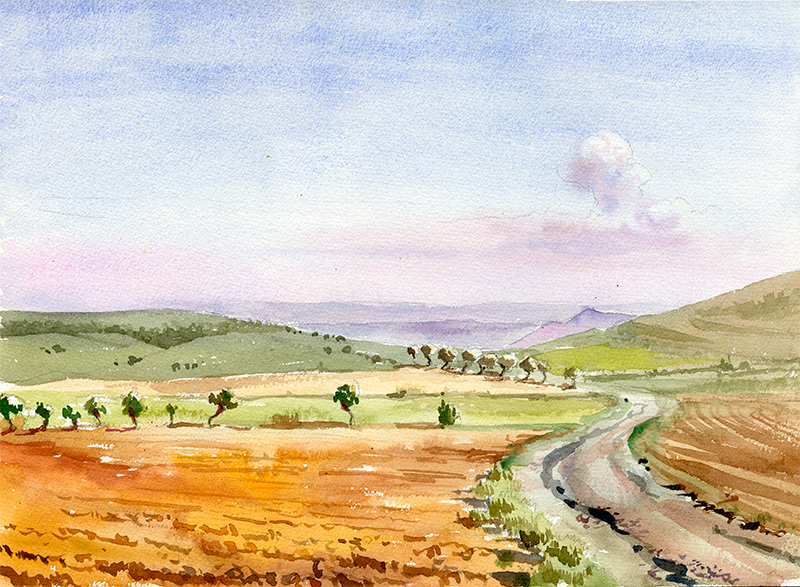 Samanes - Acuarela / watercolour - ® Lucía Gómez Serra