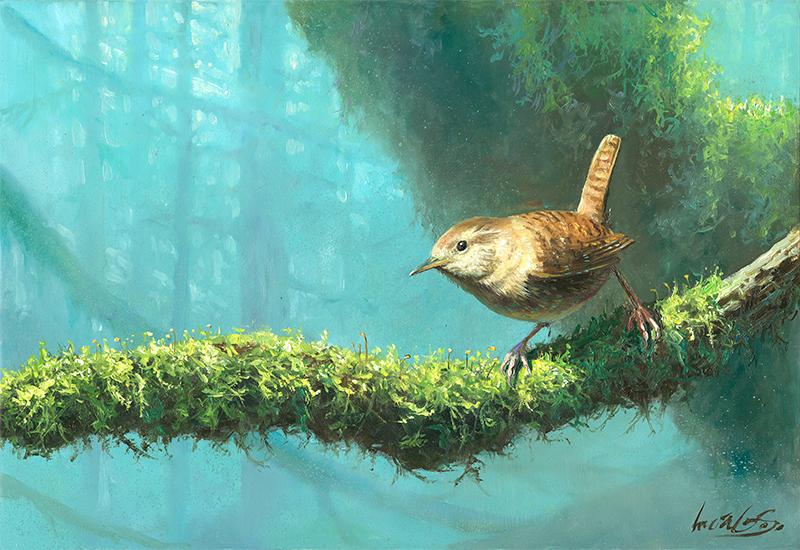 Chochín común / Winter wren / Troglodytes troglodytes - Pintura al óleo sobre tabla de madera / Oil painting on wood - © Lucía Gómez Serra