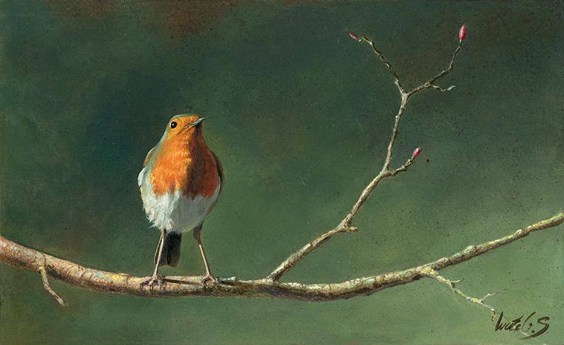 Petirrojo europeo / European robin / Erithacus rubecula - Pintura al óleo sobre tabla de madera / Oil painting on wood - © Lucía Gómez Serra