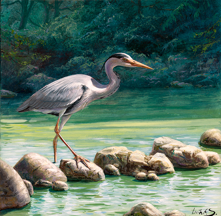 Garza real / Grey heron / Ardea cinerea - Acrílico sobre tela / Acrylic painting on canvas - © Lucía Gómez Serra