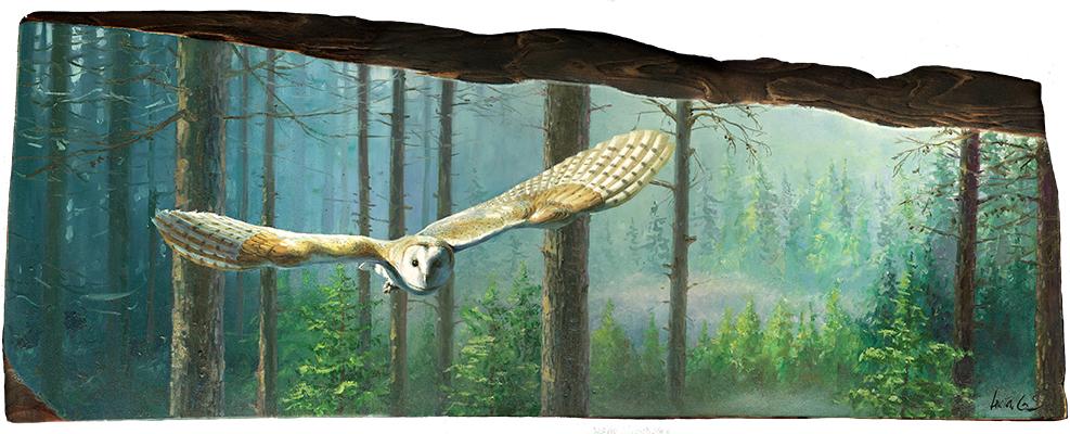 Lechuza común / Barn owl / Tyto alba - Óleo sobre tabla de madera / Oil painting on wood - 61x22,5x2,5 cm -© Lucía Gómez Serra