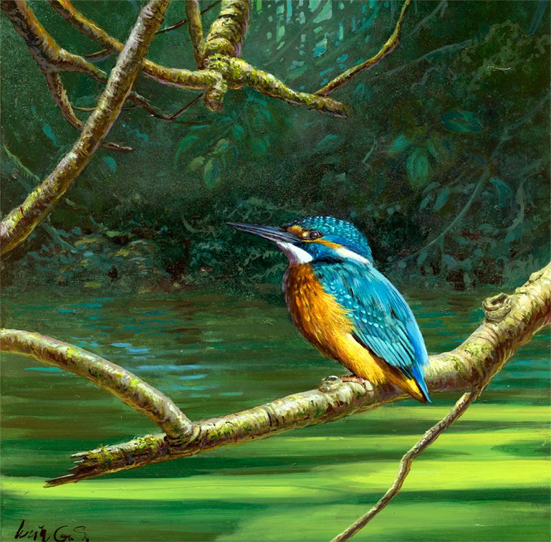 Martín pescador común / Common kingfisher / Alcedo atthis - Acrílico sobre tela / Acrylic painting on canvas - 30,5 x 30,5 cm -© Lucía Gómez Serra