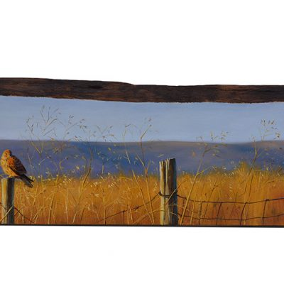 Falco tinnunculus / Cernícalo vulgar / Common kestrel - Obra realizada sobre bloque de madera de cerezo / Painting on cherrywood - 84 x 20,5 x 3 cm - © Lucía Gómez Serra