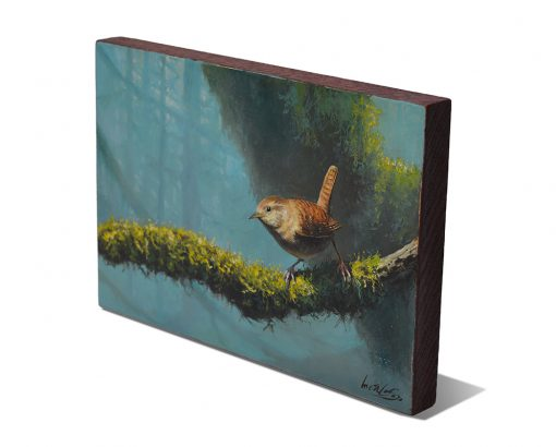 Troglodytes troglodytes / Chochín común / Winter wren - Obra realizada al óleo sobre tabla de madera de sapeli / Oil painting on sapele wood - 23,3 x 15,7 x 2 cm - © Lucía Gómez Serra