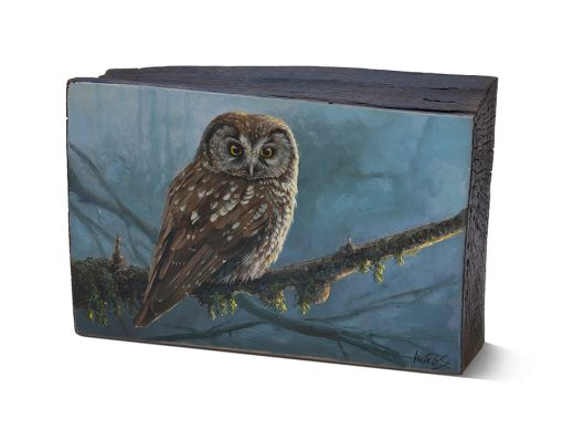 Aegolius funereus / Mochuelo boreal / Tengmalm's owl - Óleo sobre bloque de madera de haya / Oil painting on beech wood - 26 x 16,5 x 6,5 cm - © Lucía Gómez Serra