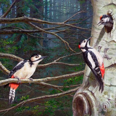 Pico picapinos / Great spotted woodpecker/ Dendrocopos major – Acrílico sobre lienzo / Acrylic painting on canvas – 46 x 33,5 cm – © Lucía Gómez Serra