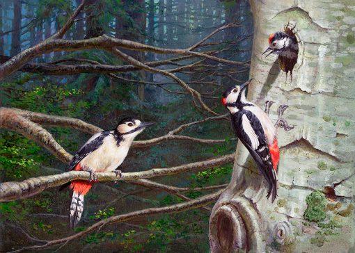 Pico picapinos / Great spotted woodpecker/ Dendrocopos major – Acrílico sobre lienzo / Acrylic painting on canvas – 46 x 33,5 cm – © Lucía Gómez Serra