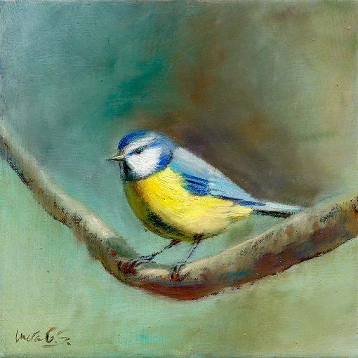 Herrerillo común / Blue tit / Cyanistes caeruleus – Óleo sobre lienzo y bastidor 3D / Oil painting on canvas – 15 x 15 x 3,5 cm -© Lucía Gómez Serra