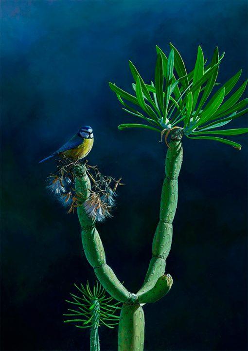 Herrerillo africano (parus teneriffae) y verode (senecio kleinia) – Pintura al óleo sobre lienzo / Oil painting on canvas – 33,5 X 46 cm © Lucía Gómez Serra