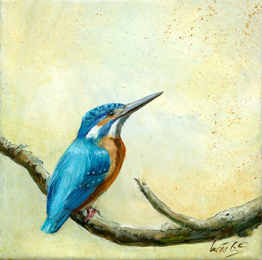Martín pescador común / Common kingfisher / Alcedo atthis – Óleo sobre lienzo y bastidor 3D / Oil painting on canvas – 15 x 15 x 3,5 cm -© Lucía Gómez Serra